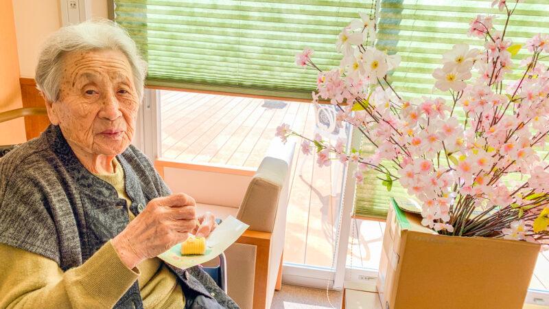 桜を見ながらお茶を楽しみましょう♪うがた苑で春のお茶会を行いました!
